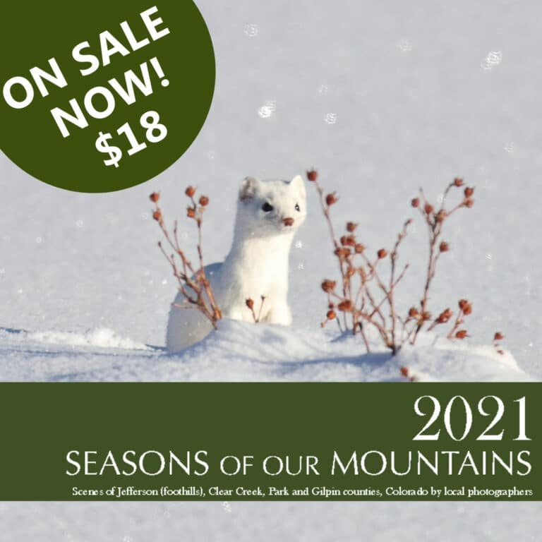 Seasons of Our Mountains Calendars on Sale Now