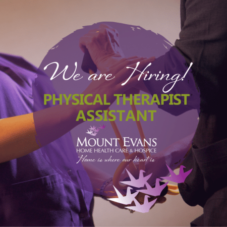 We're Hiring graphic - Physical Therapist Assistant